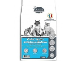 octave chaton 3 kg
